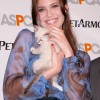 Mandy Moore Goes Back To Red & Takes The Pet Pledge