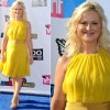 Amy Poehler In MaxMara  2011 VH1 Do Something Awards