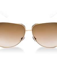 Gucci Sunglasses Design