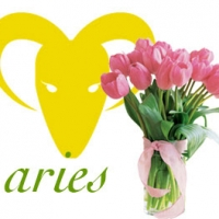 Aries Romance