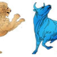 Leo to Taurus Compatibility