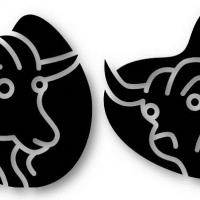 Taurus to Taurus Compatibility