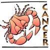 Cancer Horoscope Career