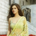 "Neha ""Mia"" Dalvi's Seasons India saree Pictures"