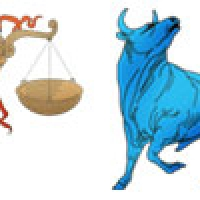 Libra to Taurus Horoscope Compatibility