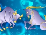Capricorn – Taurus Compatibility