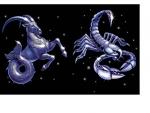 Capricorn – Scorpio Compatibility