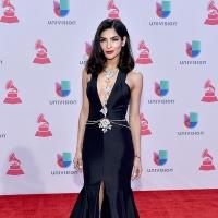 2015 Latin Grammy Awards Zoe Saldana, Natalia Jimenez, & More Best Dressed