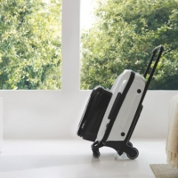 Bugaboo Boxer and new luggages