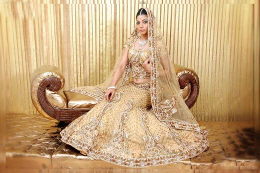 Gorgeous Net Lehenga Choli Design for Wedding