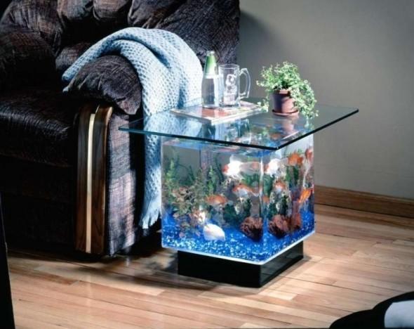 Multifunctional Aquarium Design