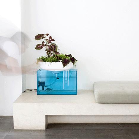 floating garden benjamin graininess duende studio aquarium