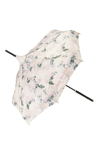Summer Heat Wave Survival Accessories Parasol Photo