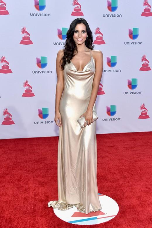 Latin Grammys Red Carpet 2015 Pictures